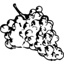 Grapes Line Art
