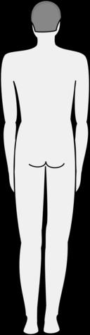Male Body Silhouette Back