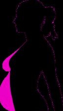 Pregnancy Silhouet
