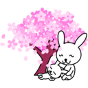 download Cherry Blossoms Rabbit clipart image with 315 hue color