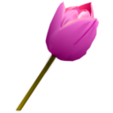 download Pink Tulip clipart image with 315 hue color