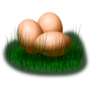 Egg In Grass