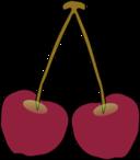 A Pair Of Oregon Columbia Gorge Cherries